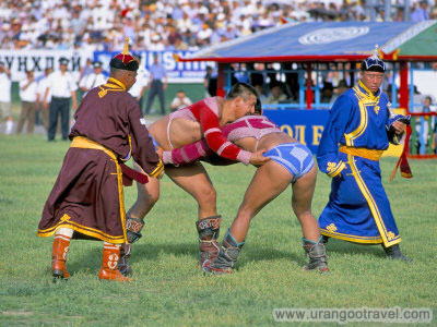 Naadam Festival Wrestling Match