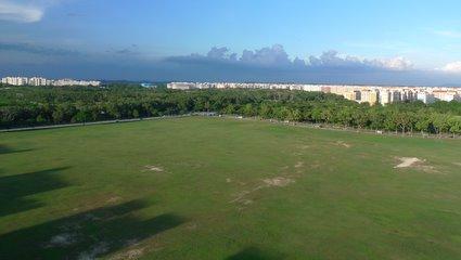 Landscape open field